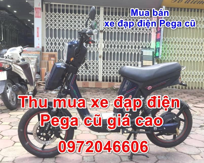 Mua bán xe đạp điện Pega Cap A9 cũ